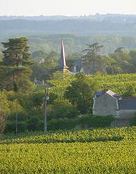 FISAC rural