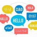 L'apprentissage des langues étrangères :